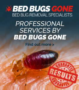 Bed Bugs Gone